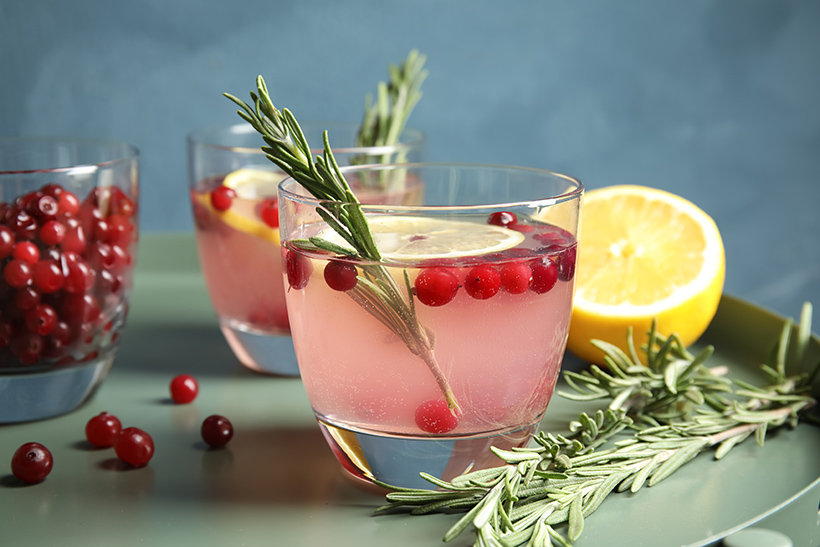 Warmer Cranberry Cocktail